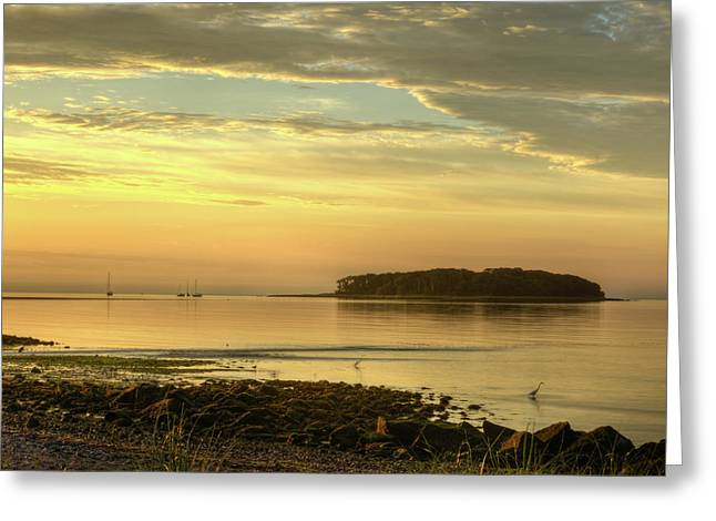 Clam In The Sand Greeting Cards - Serene Morning Greeting Card by John Supan