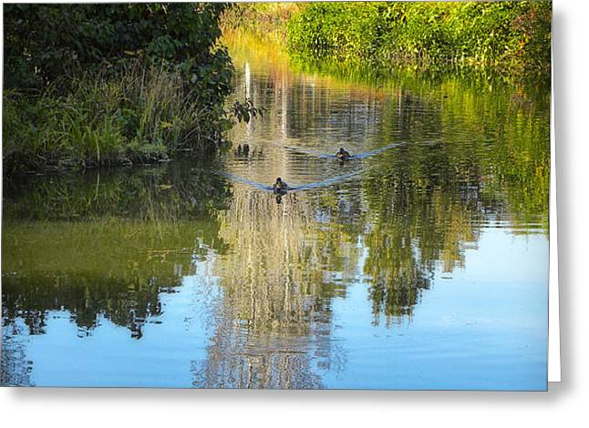 Serene Reflection Greeting Card by Julie Palencia