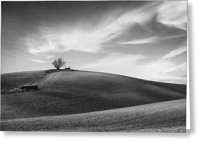 Field. Cloud Greeting Cards - Serenity - Black and White Greeting Card by Larry Marshall
