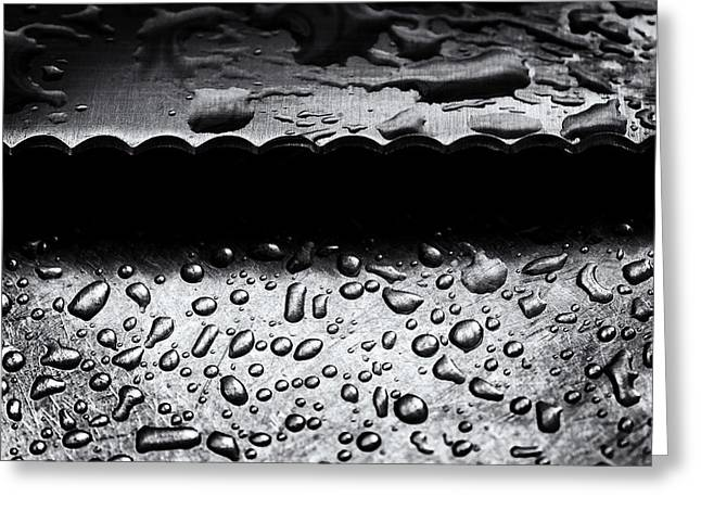 Stainless Steel Greeting Cards - Serrated Greeting Card by Tim Nichols