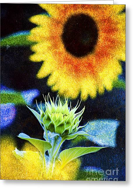David Lade Greeting Cards - Set the Controls Greeting Card by David Lade