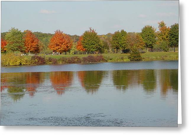 Trees Reflecting In Water Greeting Cards - Seven Lakes State Park MI Greeting Card by Margrit Schlatter