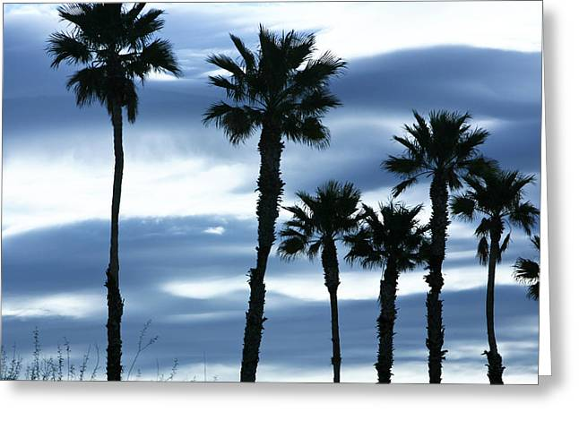 Seven Palms Greeting Card by Gilbert Artiaga