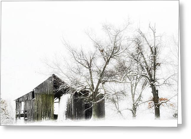 Barns In Snow Greeting Cards - Shabby Barn Greeting Card by Kathy Jennings