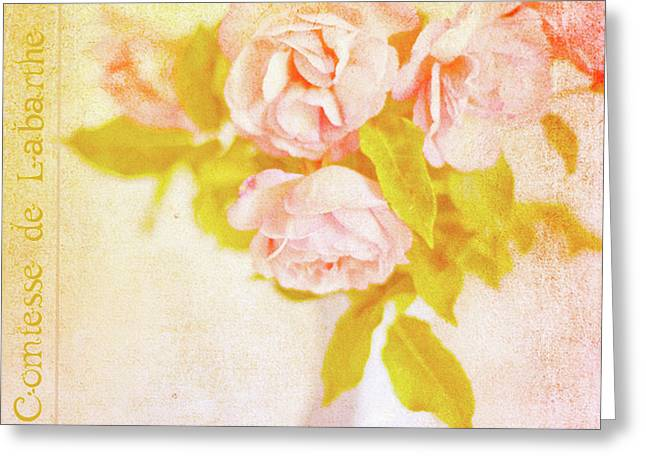 Texture Floral Greeting Cards - Shabby Chic Roses Greeting Card by Linde Townsend