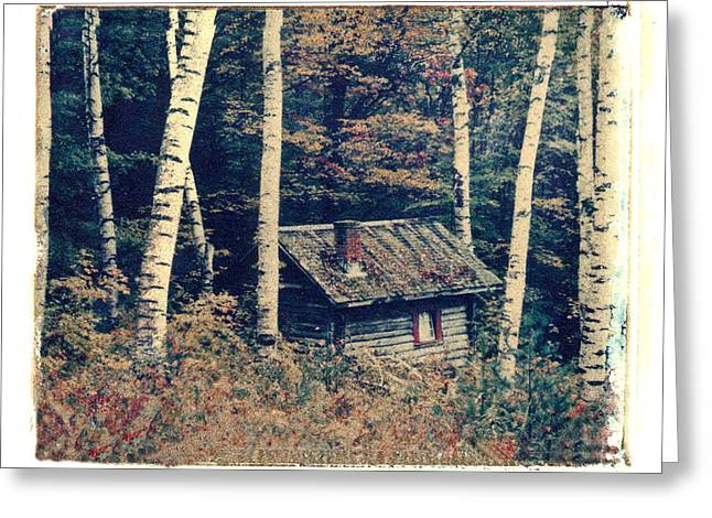 Polaroid Transfer Greeting Cards - Shack and Birch Trees Greeting Card by Joe  Palermo