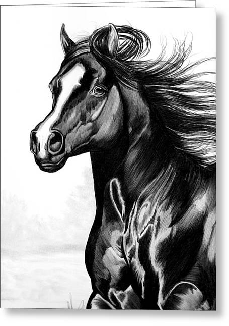 Quarter Horses Drawings Greeting Cards - Shading of a horse in Bic Pen Greeting Card by Cheryl Poland