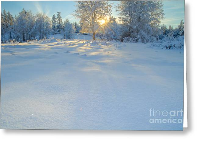 Snow Scape Greeting Cards - Shadow Dance Greeting Card by Idaho Scenic Images Linda Lantzy