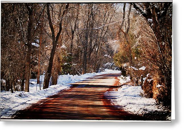 Greeting Cards - Shadowy Path Greeting Card by Lisa  Spencer