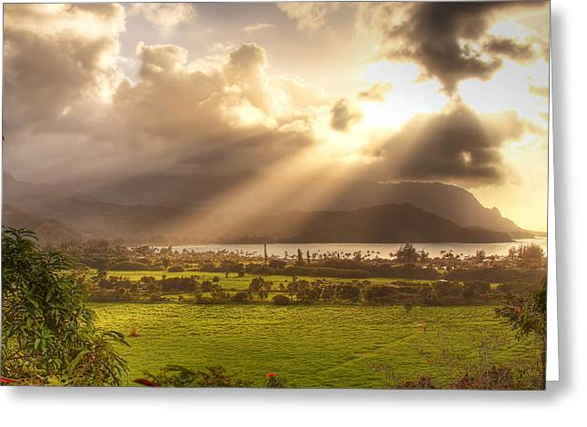 Meadow Shaft Greeting Cards - Shafts Of Sunlight At Sunset Greeting Card by Robert Postma