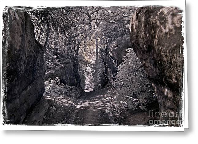 Infared Photography Greeting Cards - Shall We Pass - Infrared Photography Greeting Card by Steven Cragg