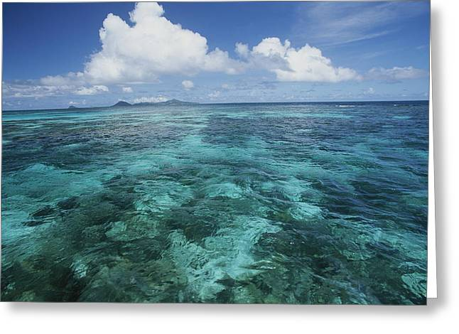 Grenadine Greeting Cards - Shallow Blue Water Stretches Greeting Card by Michael Melford