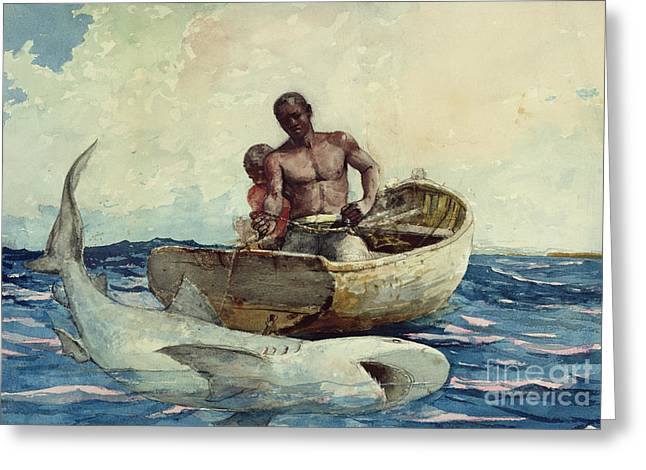 White Shark Paintings Greeting Cards - Shark Fishing Greeting Card by Winslow Homer