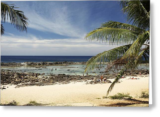 Vince Greeting Cards - Sharks Cove Beach Greeting Card by Vince Cavataio - Printscapes