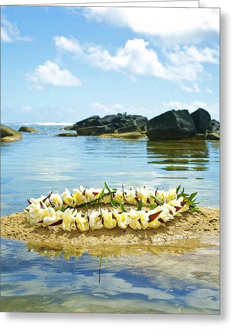 Sharks Cove Greeting Cards - Sharks Heiau with Lei Greeting Card by Kicka Witte - Printscapes
