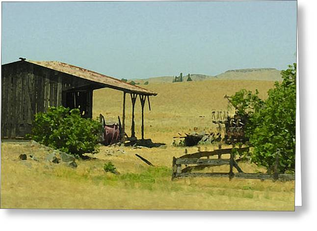 Shed In A Field Of Gold Greeting Card by Grace Dillon