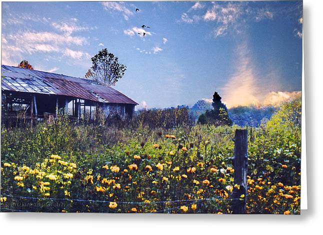 Shed In Blue Sky Greeting Card by Walt Jackson