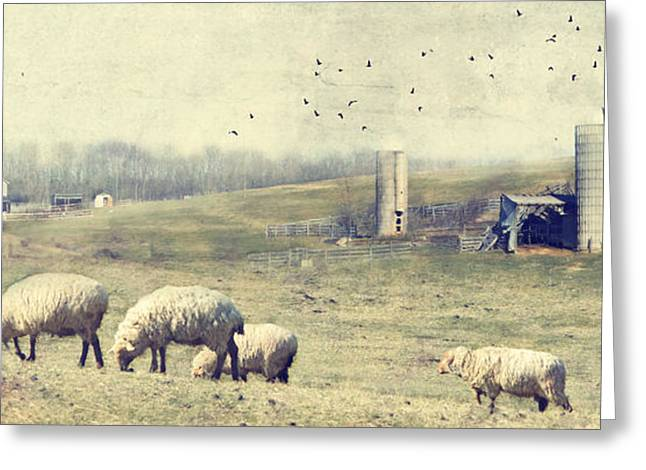 Ladscapes Greeting Cards - Sheep Farm Greeting Card by Kathy Jennings