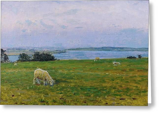 Sheep Paintings Greeting Cards - Sheep Grazing Greeting Card by Viggo Johansen