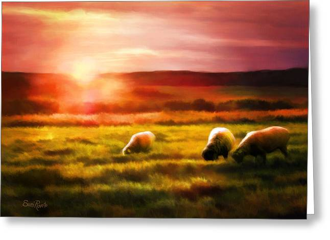 Nature Scene Digital Art Greeting Cards - Sheep In Sunset Greeting Card by Suni Roveto