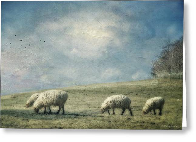 Farm Photographs Greeting Cards - Sheep On The Hill Greeting Card by Kathy Jennings
