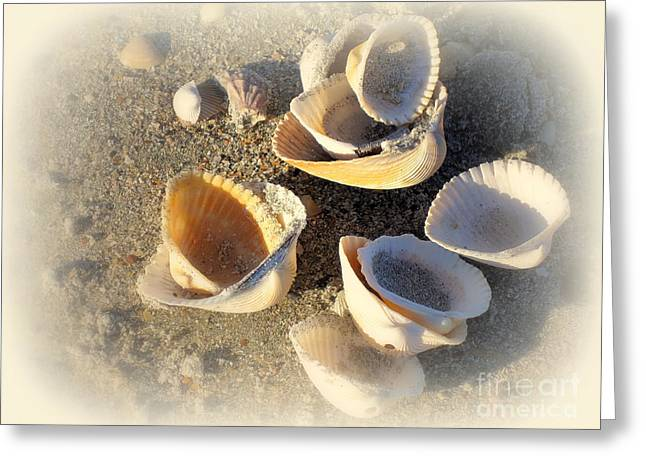 Sea Shell Art Greeting Cards - Shells at the Beach Greeting Card by Susanne Van Hulst