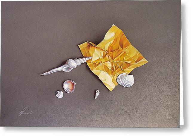 Shells Of The Day Greeting Card by Elena Kolotusha