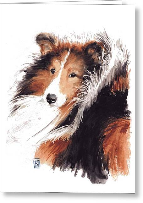 Debra Jones Greeting Cards - Sheltie Greeting Card by Debra Jones