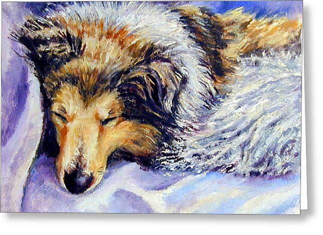 Shetland Dog Greeting Cards - Sheltie Napster Greeting Card by Lyn Cook