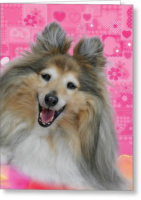 Sheltie Smile Greeting Card by Christine Till