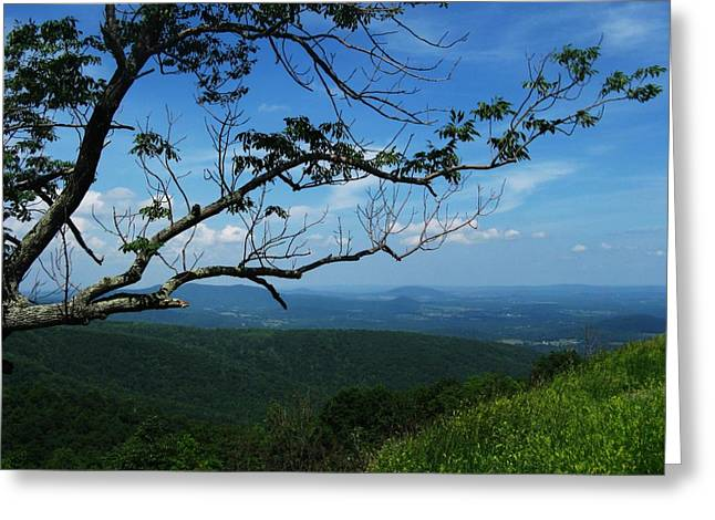 Best Sellers -  - Scenic Drive Greeting Cards - Shenandoah Beauty Greeting Card by Joyce Kimble Smith