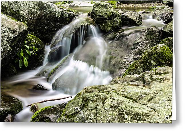 Hdr Landscape Pyrography Greeting Cards - Shenandoah Stream Greeting Card by Shane York