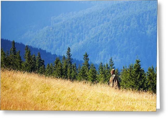 Carpathian Mountains Greeting Cards - Shepherd Greeting Card by Gabriela Insuratelu