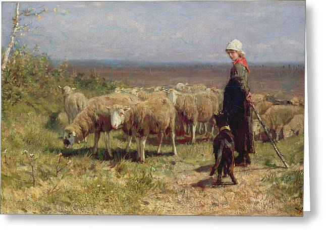 Flock Greeting Cards - Shepherdess Greeting Card by Anton Mauve