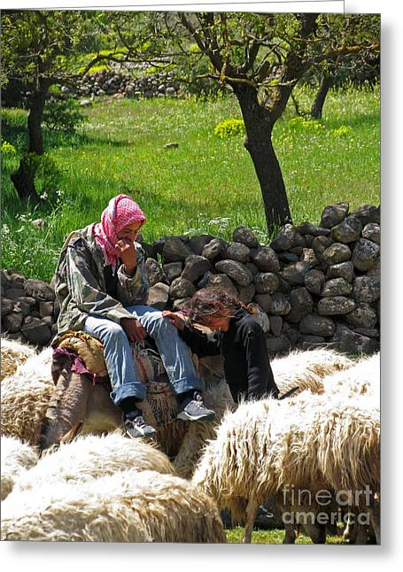 Issam Hajjar Greeting Cards - shepherds in Golan Greeting Card by Issam Hajjar