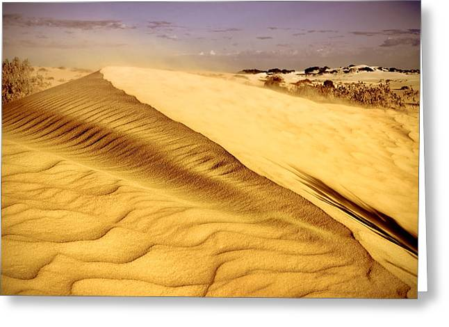 Nikon D90 Greeting Cards - Shifting Sands Greeting Card by Heather Thorning