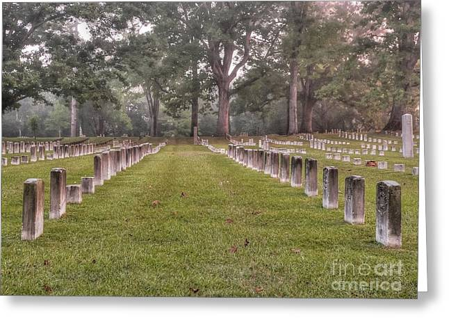 Tennessee River Greeting Cards - Shiloh Morning Greeting Card by David Bearden