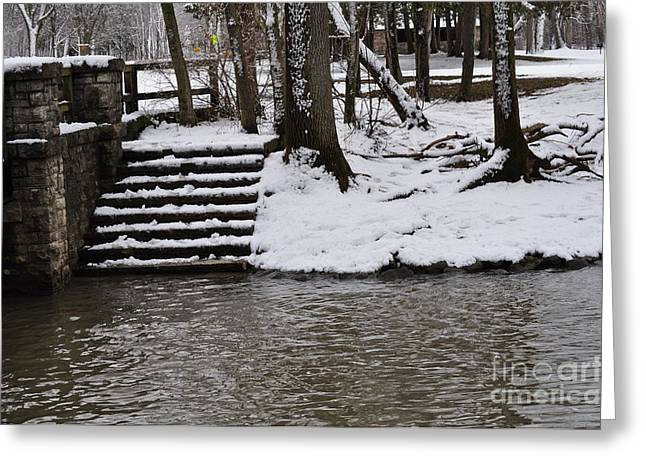 Petrifying Springs Greeting Cards - Shimmering Water Steps 1 Greeting Card by Tina Jones