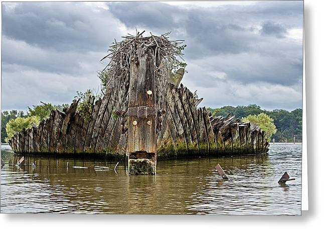 Mallow Greeting Cards - Ship Graveyard at Mallows Bay - Maryland Greeting Card by Brendan Reals