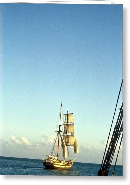 Pirate Ships Greeting Cards - Ship off the bow Greeting Card by Douglas Barnett