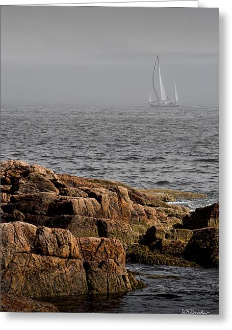 Sailboat Ocean Greeting Cards - Ships Harbor in Maine Greeting Card by James Dricker