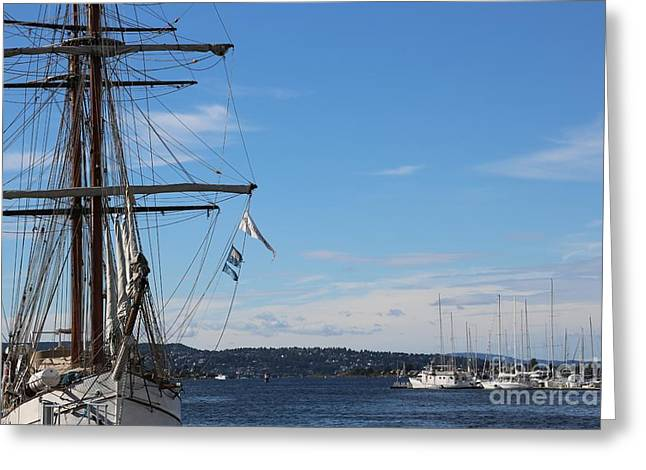 Ships In Oslo Harbor Greeting Card by Carol Groenen