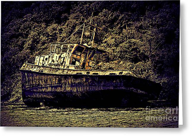 Artistic Landscape Photos Greeting Cards - Shipwreck Greeting Card by Tom Prendergast