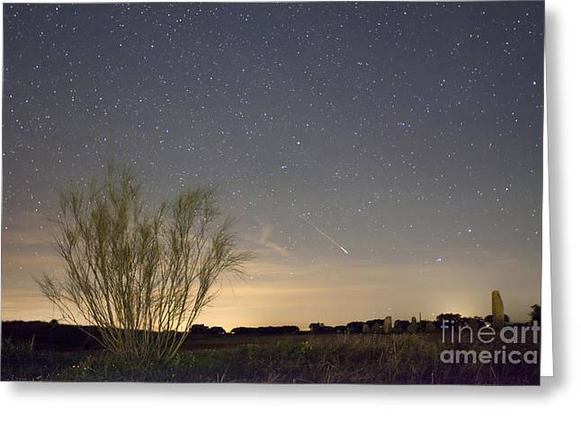 Shooting star Greeting Card by Andre Goncalves