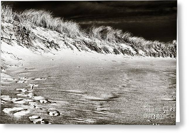 Down The Shore Greeting Cards - Shore Dunes Greeting Card by John Rizzuto