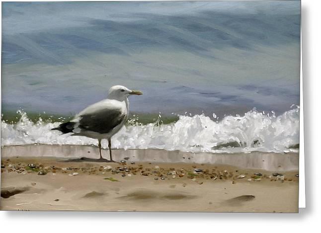 Seagulls Greeting Cards - Shoreline Breeze Greeting Card by Linda Tenukas