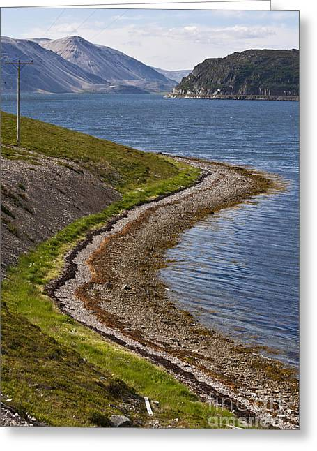 Alga Greeting Cards - Shoreline Formation Greeting Card by Heiko Koehrer-Wagner