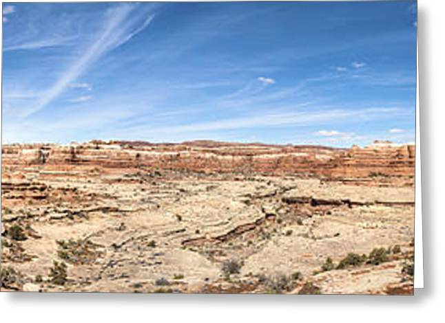 White Sandstone Greeting Cards - Shot Canyon in the Maze 3 Greeting Card by Scotts Scapes
