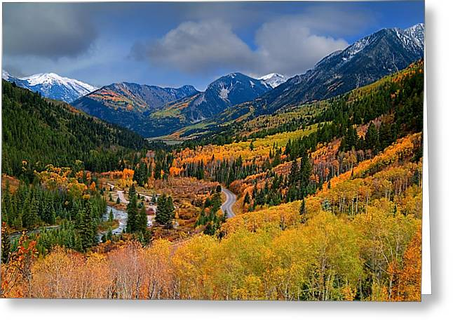 Fall Photography Greeting Cards - Show Me The Way Greeting Card by Tim Reaves