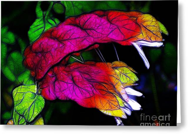 Shrimp Plant Greeting Card by Judi Bagwell